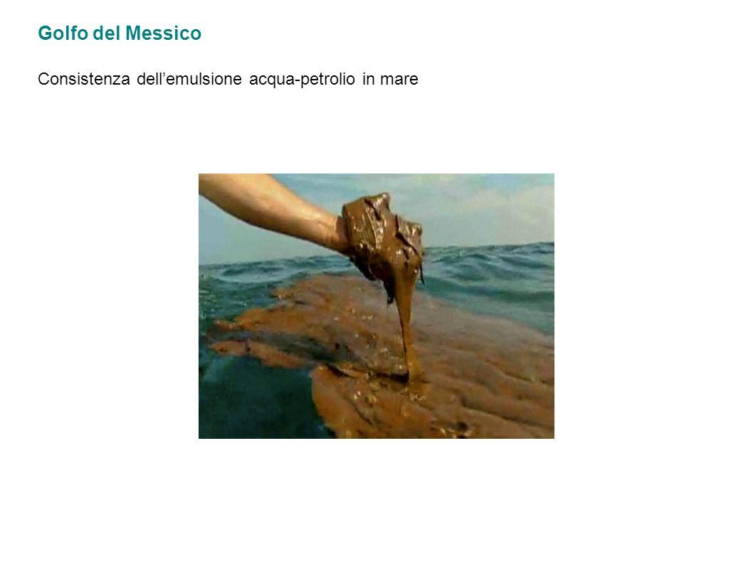 Golfo del Messico Consistenza dell'emulsione acqua-petrolio in mare