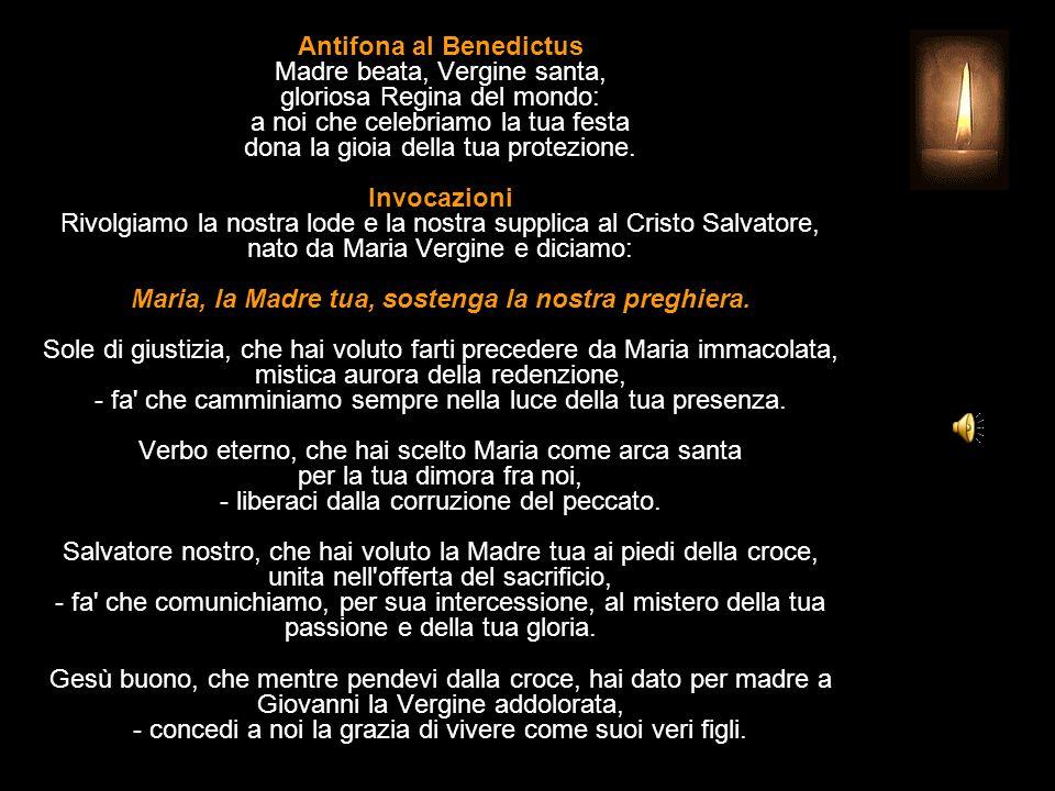 Antifona al Benedictus Madre beata, Vergine santa, gloriosa Regina del mondo: a noi che celebriamo la tua festa dona la gioia della tua protezione.