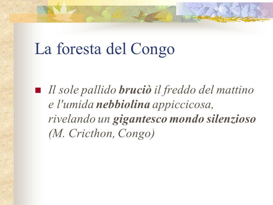 La foresta del Congo
