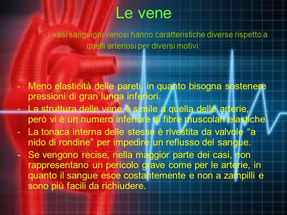 Le vene I vasi sanguigni venosi hanno caratteristiche diverse rispetto a quelli arteriosi per diversi motivi: