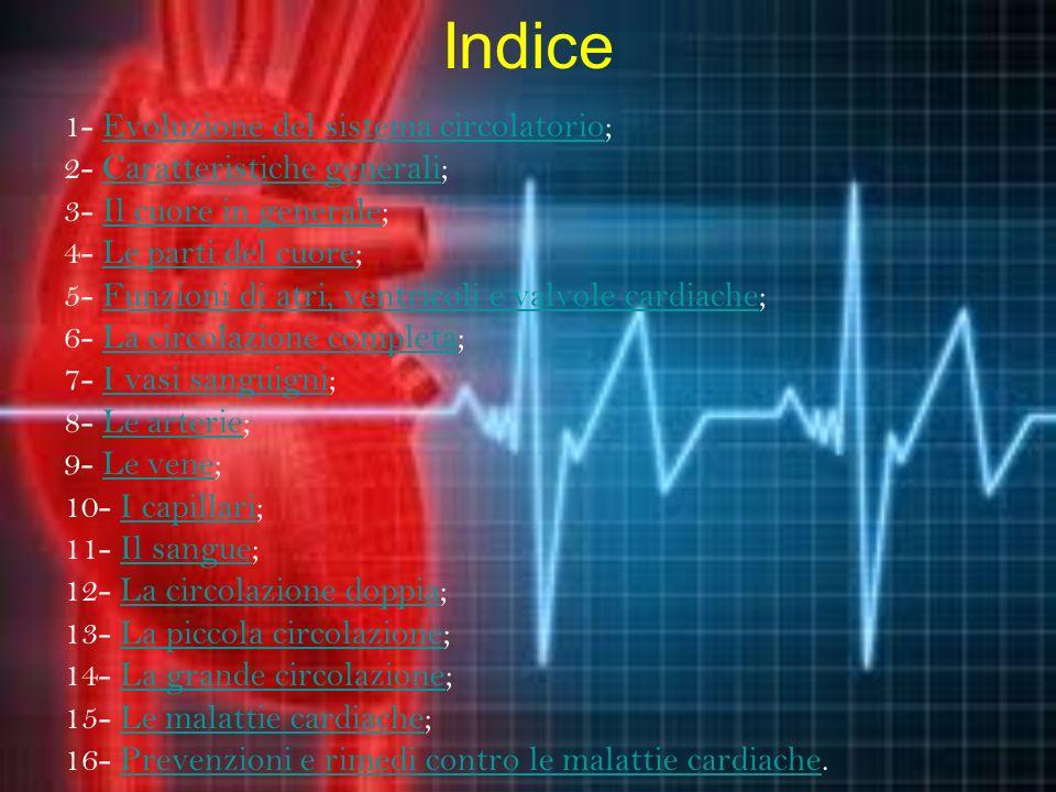Indice 1- Evoluzione del sistema circolatorio;