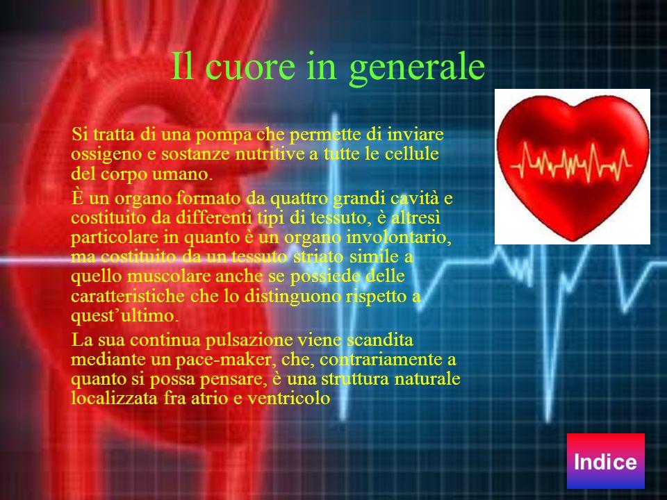 Il cuore in generale Indice