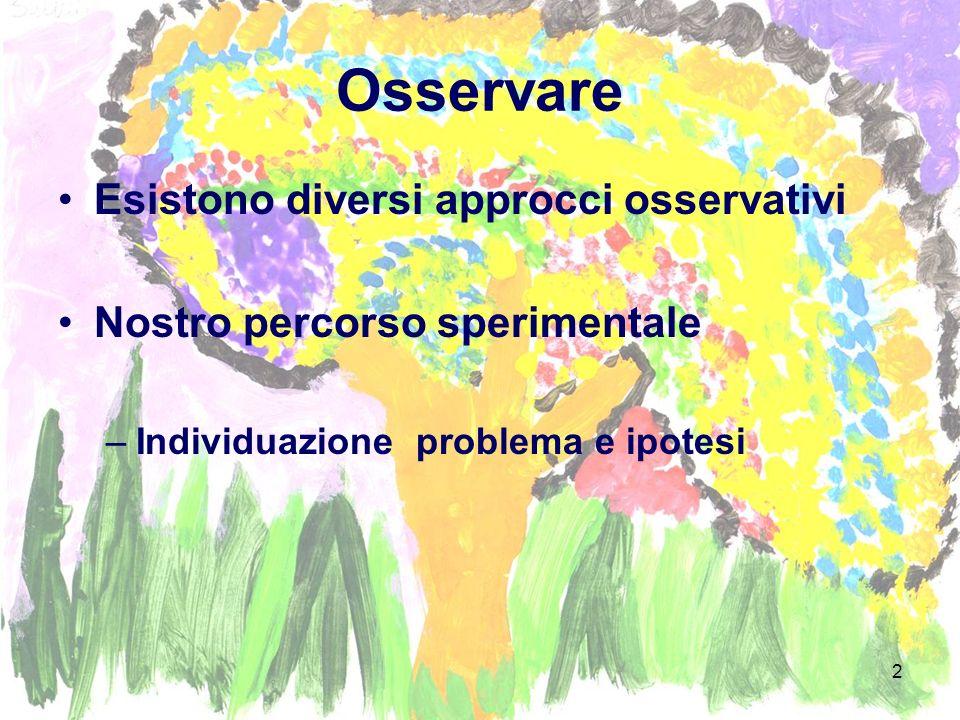 Osservare Esistono diversi approcci osservativi