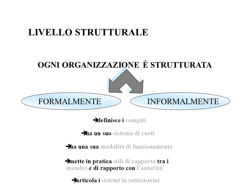 LIVELLO STRUTTURALE OGNI ORGANIZZAZIONE È STRUTTURATA FORMALMENTE