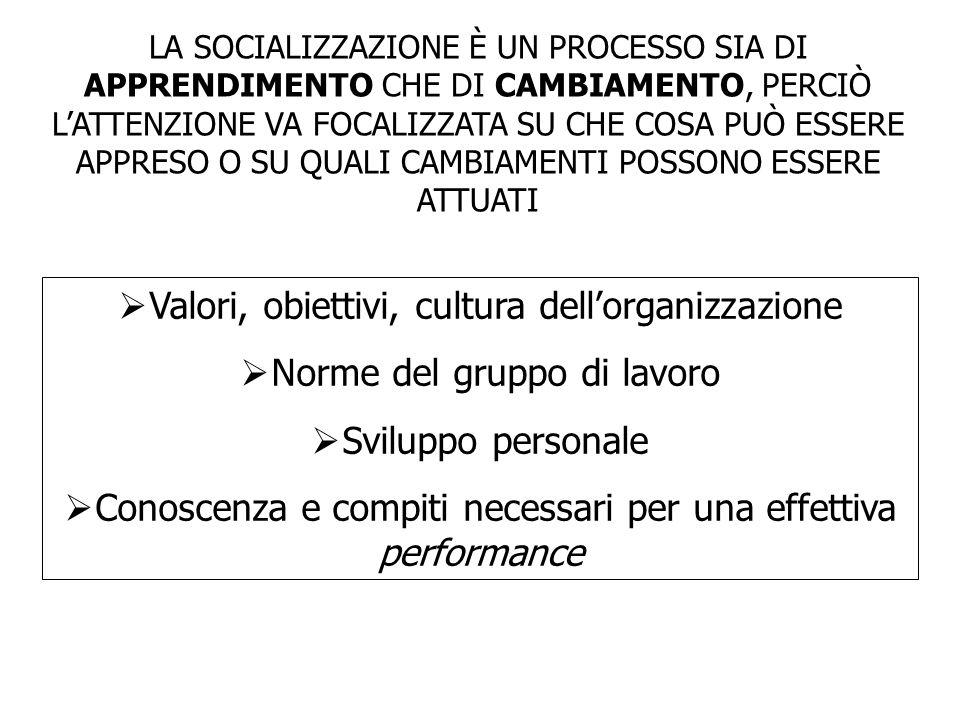 Valori, obiettivi, cultura dell'organizzazione