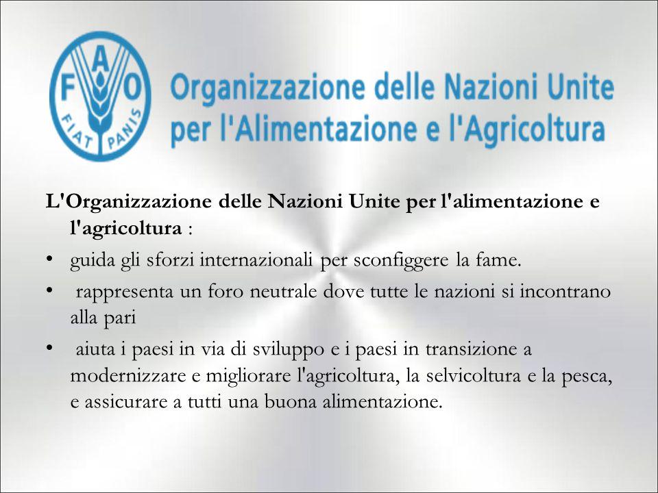 L Organizzazione delle Nazioni Unite per l alimentazione e l agricoltura :