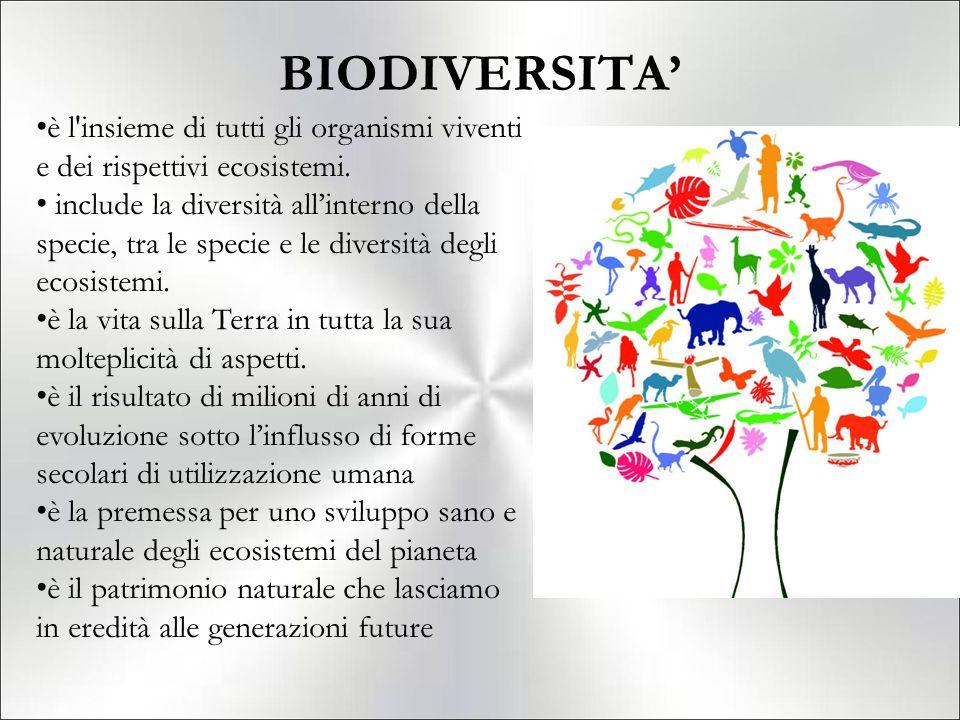 BIODIVERSITA' è l insieme di tutti gli organismi viventi e dei rispettivi ecosistemi.