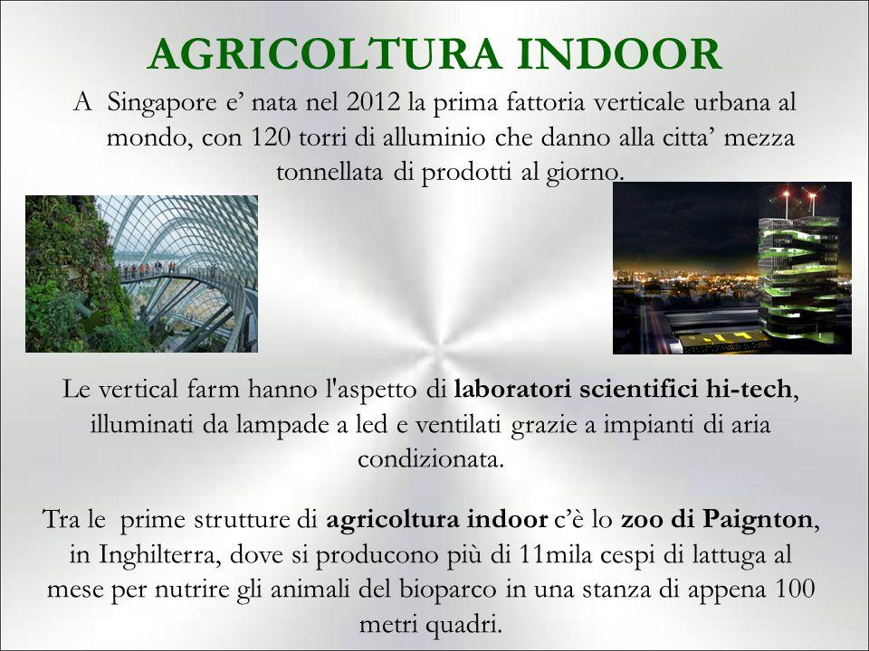 AGRICOLTURA INDOOR