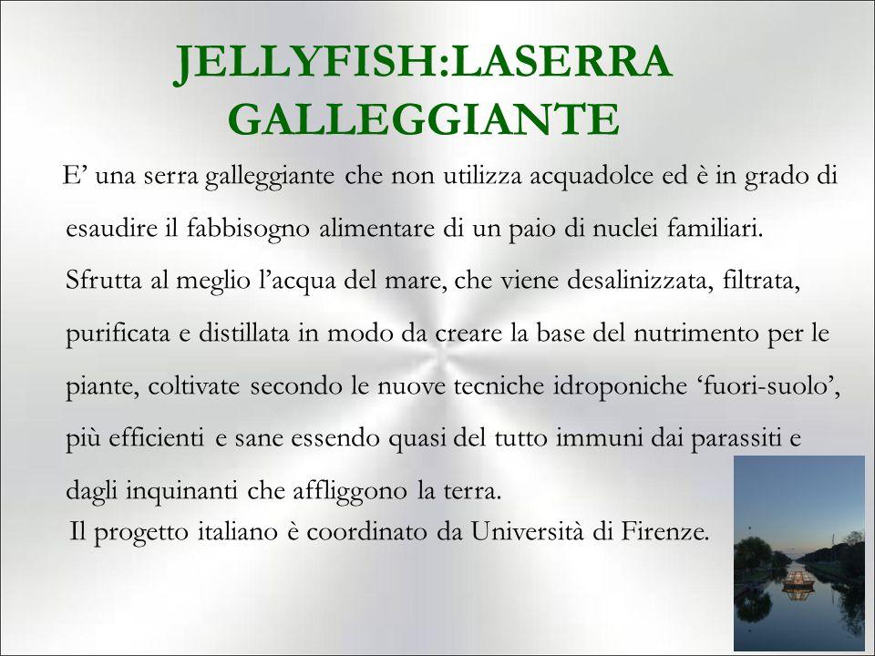 JELLYFISH:LASERRA GALLEGGIANTE
