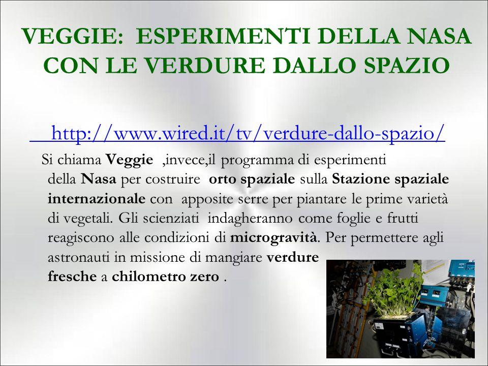 VEGGIE: ESPERIMENTI DELLA NASA CON LE VERDURE DALLO SPAZIO
