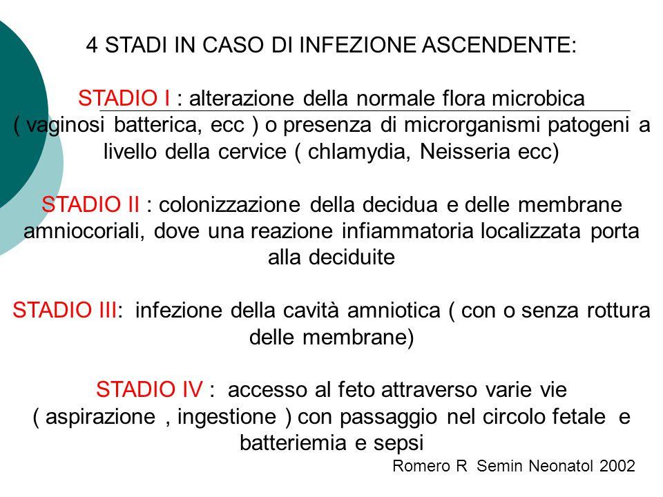 4 STADI IN CASO DI INFEZIONE ASCENDENTE: