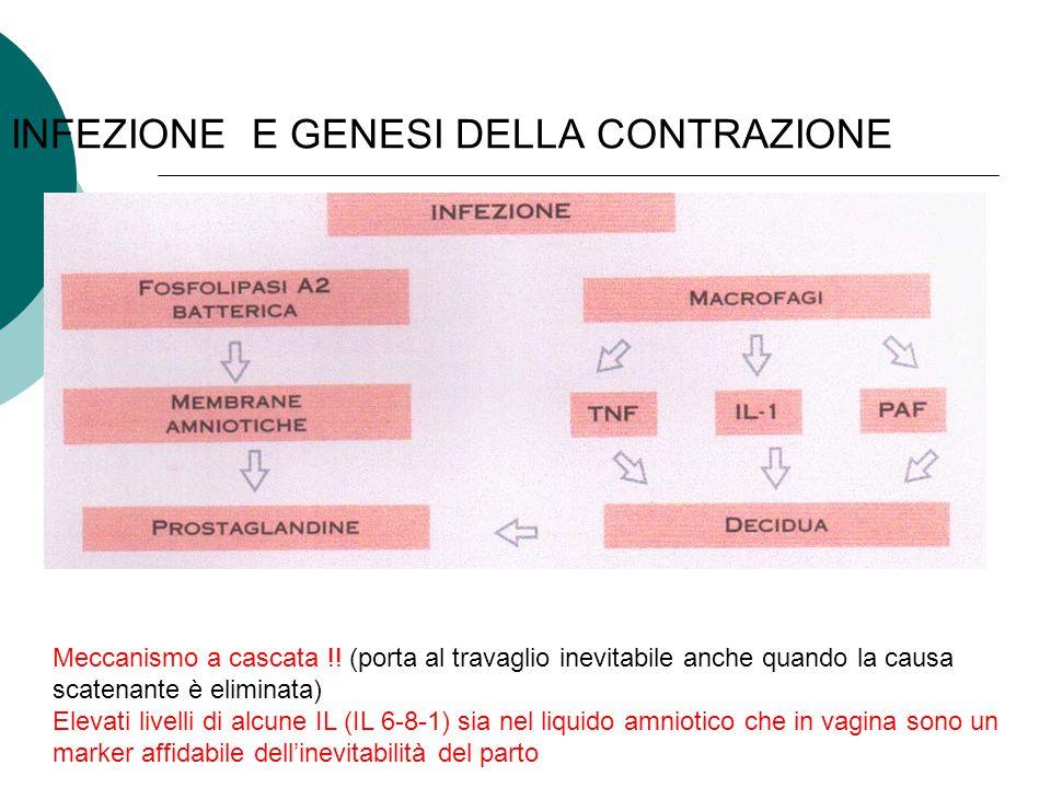 INFEZIONE E GENESI DELLA CONTRAZIONE