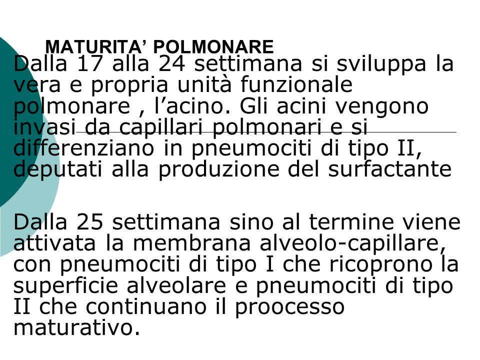 MATURITA' POLMONARE
