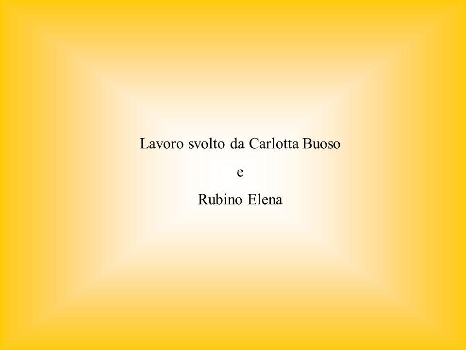 Lavoro svolto da Carlotta Buoso