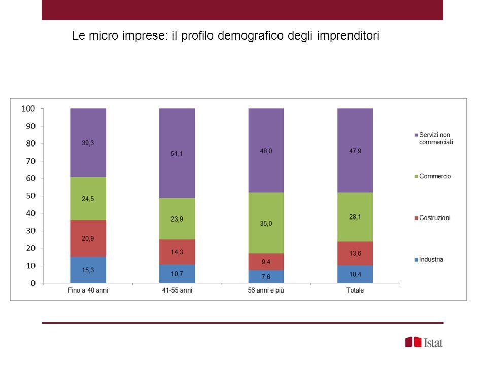 Le micro imprese: il profilo demografico degli imprenditori