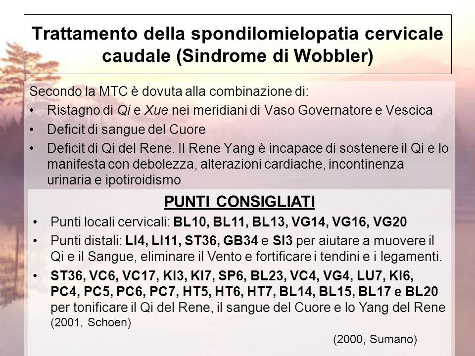 Trattamento della spondilomielopatia cervicale caudale (Sindrome di Wobbler)