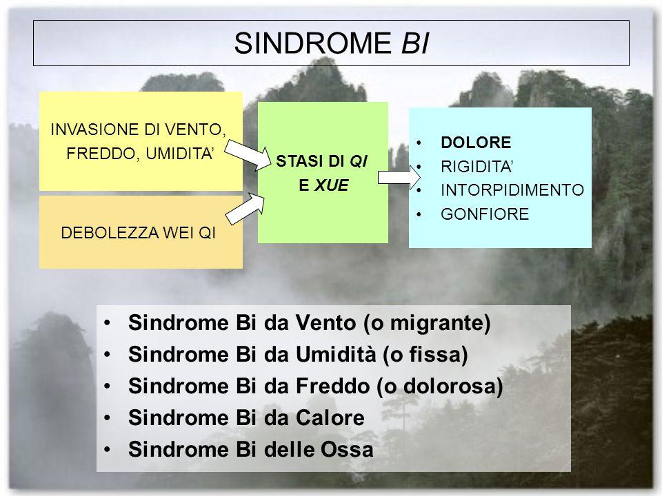 SINDROME BI Sindrome Bi da Vento (o migrante)