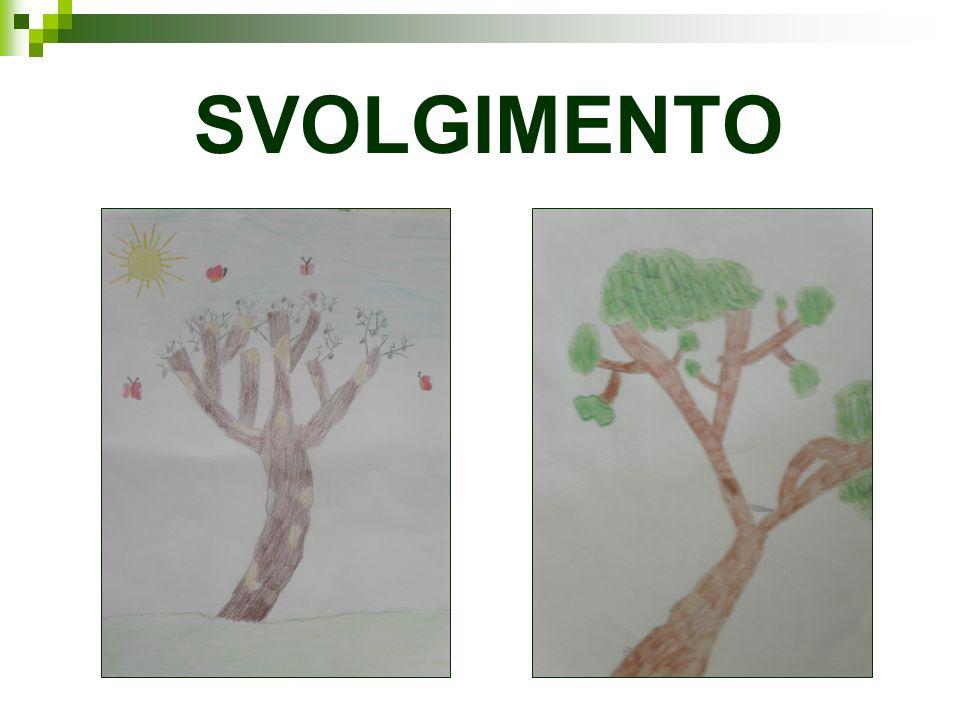 SVOLGIMENTO