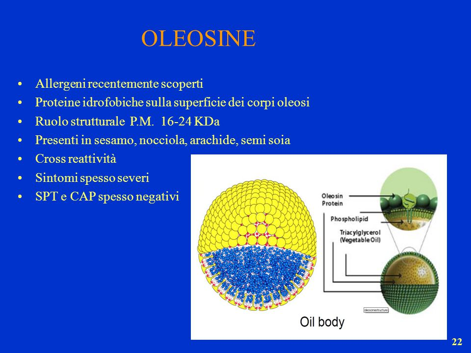 OLEOSINE Allergeni recentemente scoperti