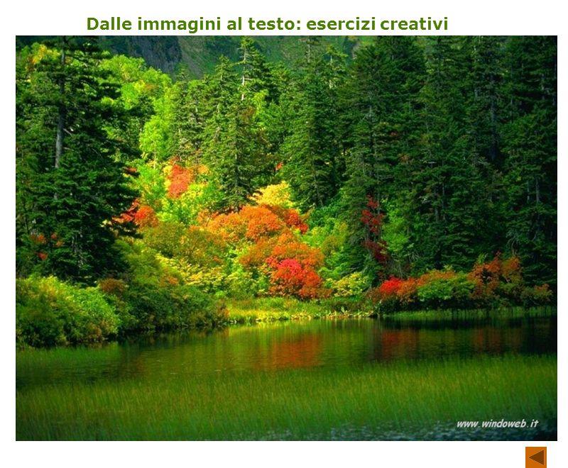 Dalle immagini al testo: esercizi creativi