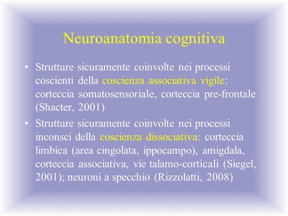 Neuroanatomia cognitiva