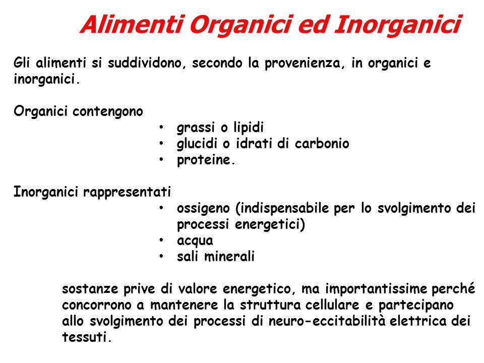 Alimenti Organici ed Inorganici