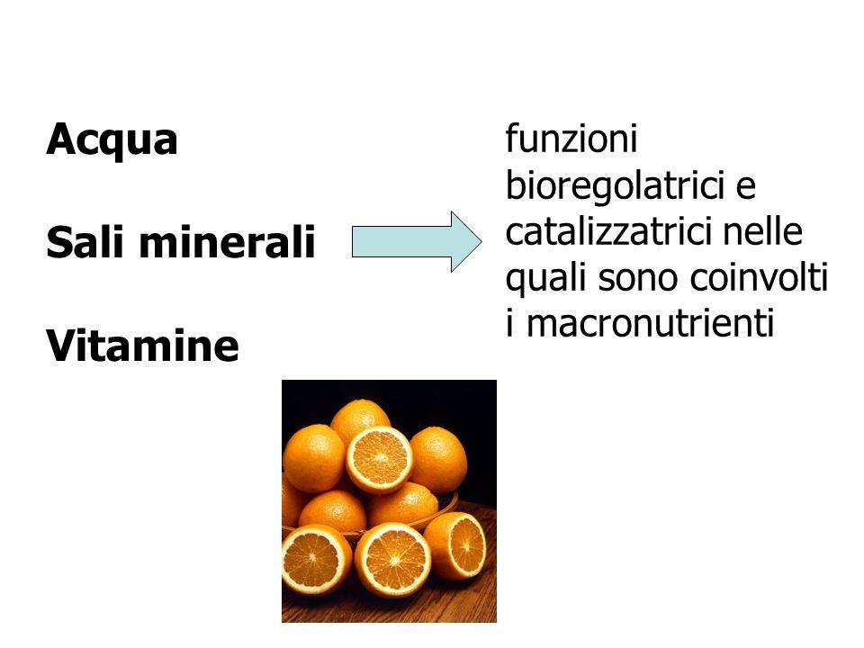 Acqua Sali minerali Vitamine