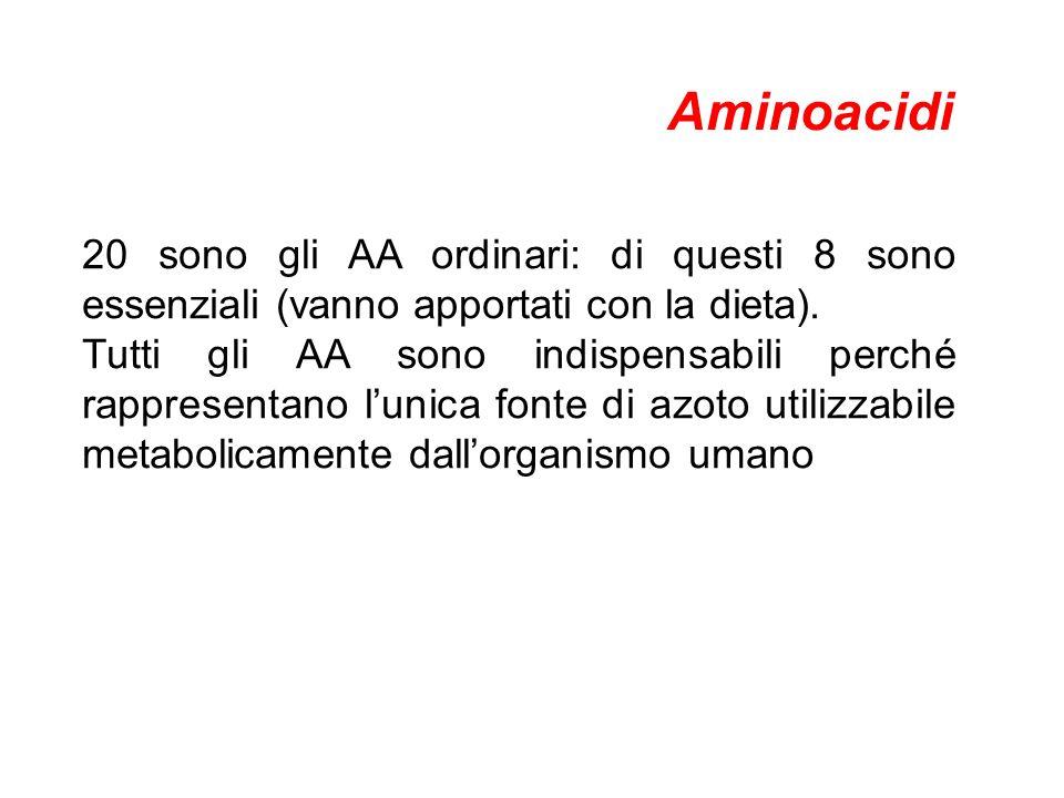 Aminoacidi 20 sono gli AA ordinari: di questi 8 sono essenziali (vanno apportati con la dieta).