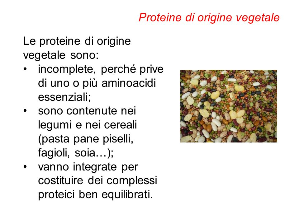 Proteine di origine vegetale