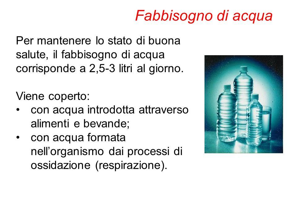 Fabbisogno di acqua Per mantenere lo stato di buona salute, il fabbisogno di acqua corrisponde a 2,5-3 litri al giorno.