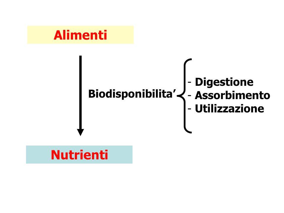 Alimenti Nutrienti Digestione Assorbimento Biodisponibilita'