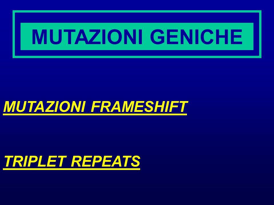 MUTAZIONI GENICHE MUTAZIONI FRAMESHIFT TRIPLET REPEATS