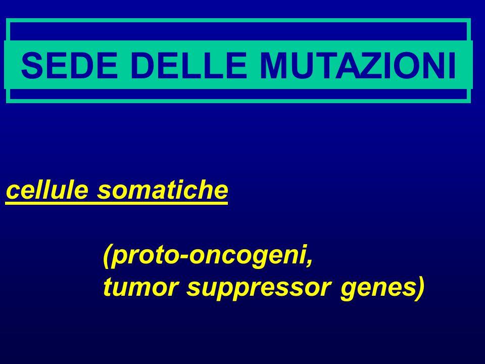 SEDE DELLE MUTAZIONI cellule somatiche (proto-oncogeni,