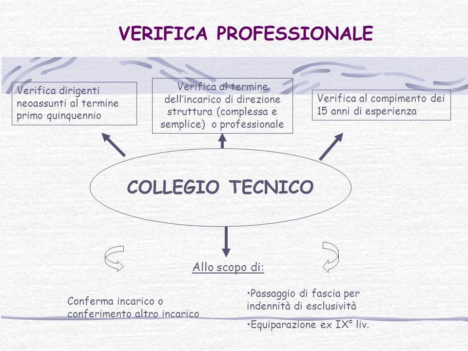 VERIFICA PROFESSIONALE