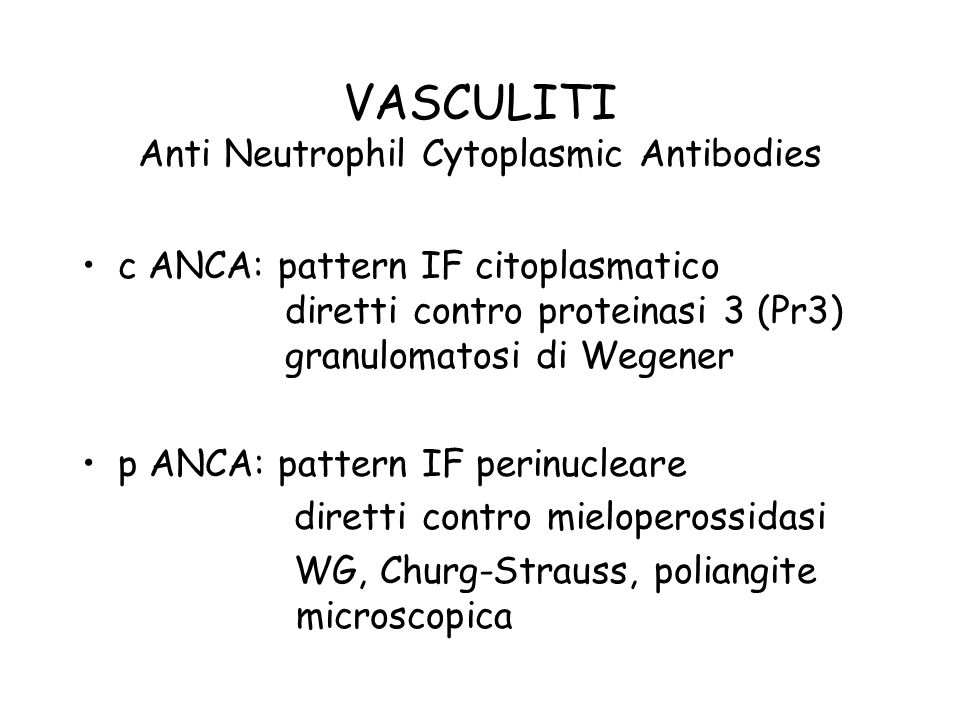 VASCULITI Anti Neutrophil Cytoplasmic Antibodies