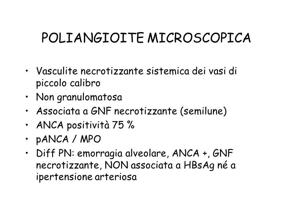 POLIANGIOITE MICROSCOPICA