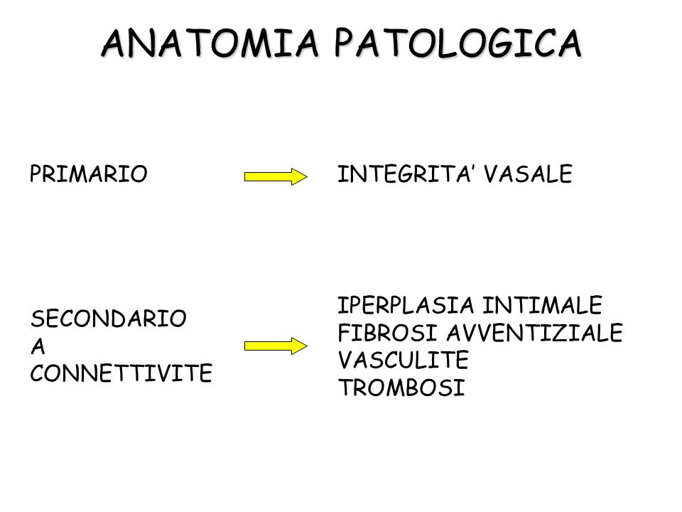 ANATOMIA PATOLOGICA PRIMARIO INTEGRITA' VASALE
