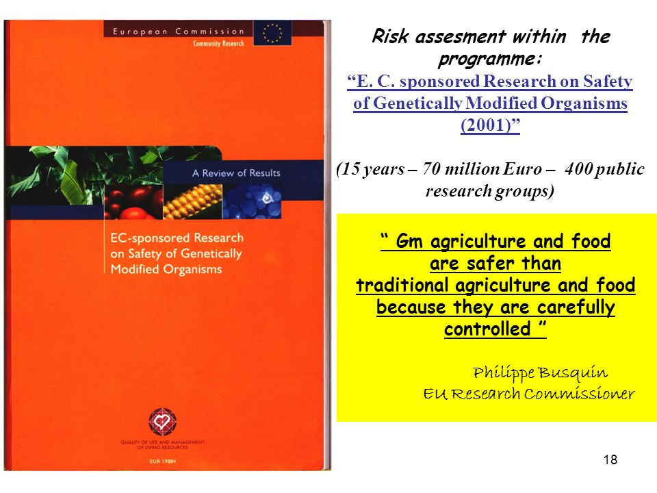 Risk assesment within the programme: