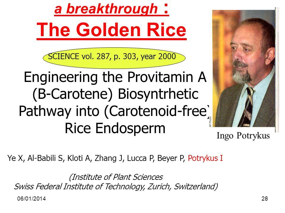 a breakthrough : The Golden Rice