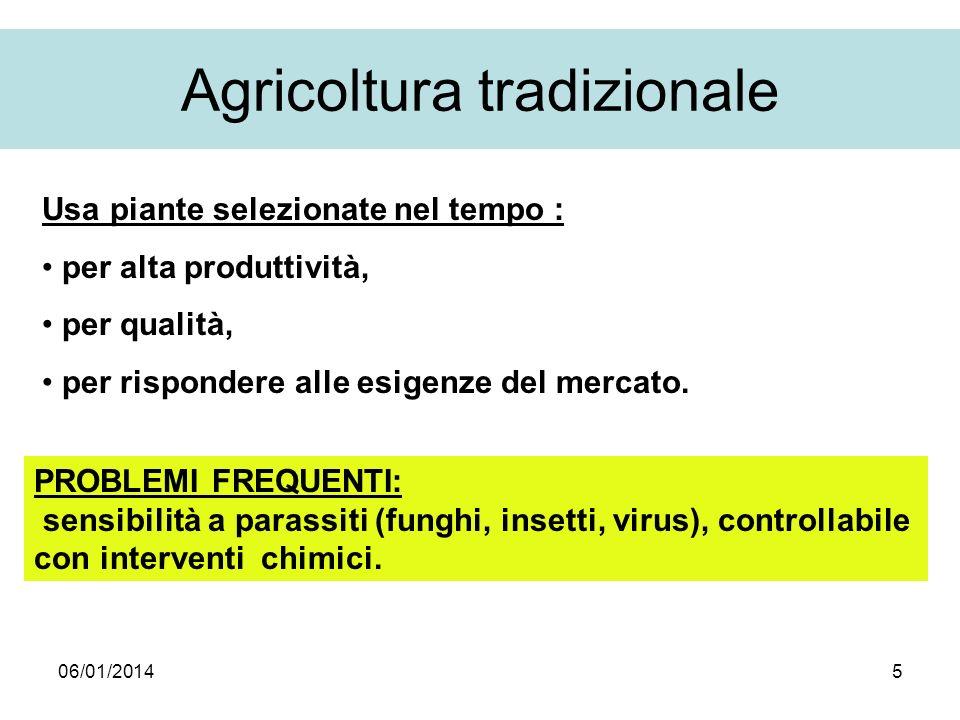 Agricoltura tradizionale