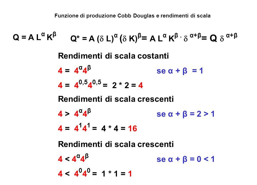 Funzione di produzione Cobb Douglas e rendimenti di scala