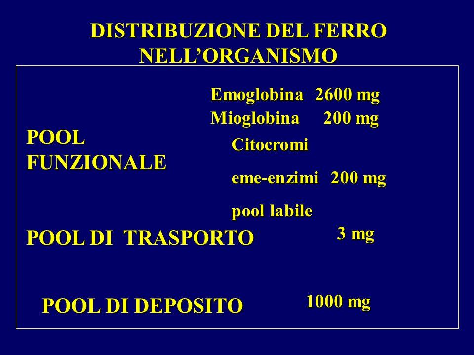 DISTRIBUZIONE DEL FERRO NELL'ORGANISMO
