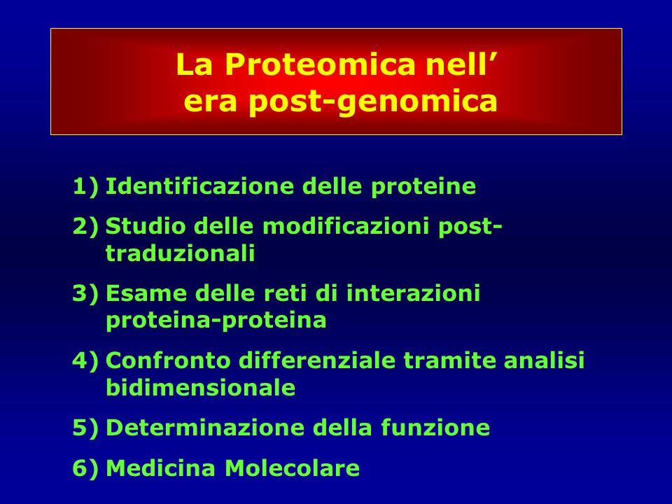 La Proteomica nell' era post-genomica