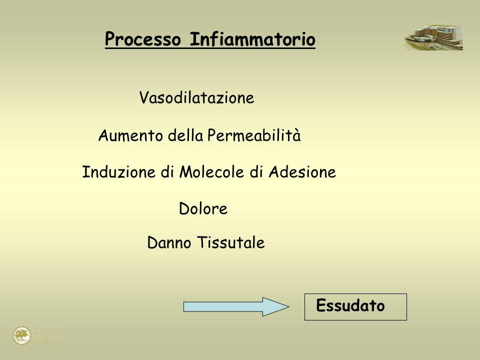 Processo Infiammatorio