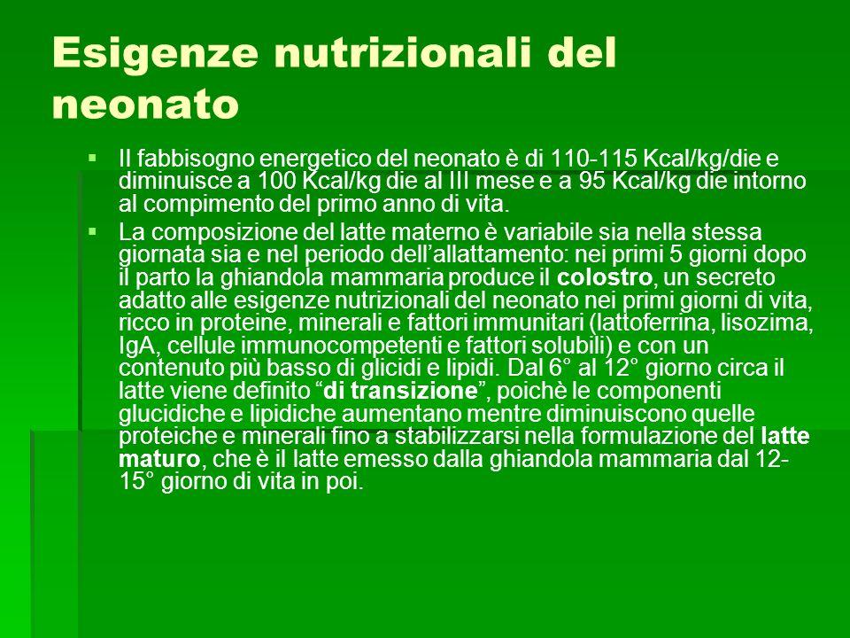 Esigenze nutrizionali del neonato
