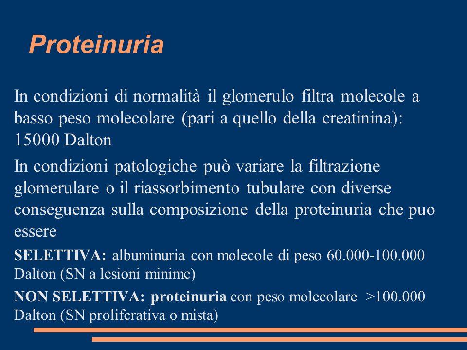 Proteinuria In condizioni di normalità il glomerulo filtra molecole a basso peso molecolare (pari a quello della creatinina): 15000 Dalton.