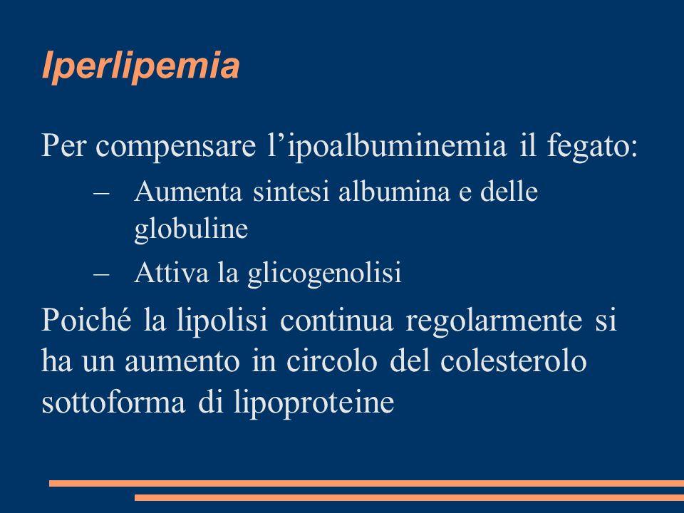 Iperlipemia Per compensare l'ipoalbuminemia il fegato: