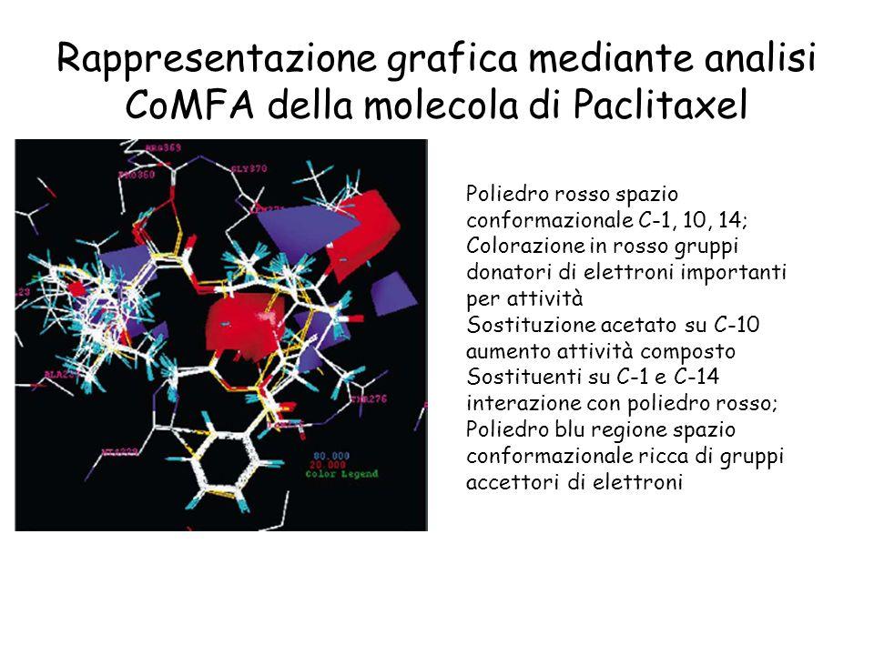 Rappresentazione grafica mediante analisi CoMFA della molecola di Paclitaxel