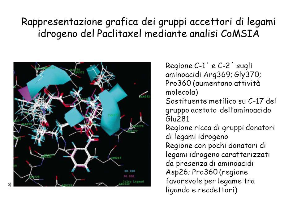 Rappresentazione grafica dei gruppi accettori di legami idrogeno del Paclitaxel mediante analisi CoMSIA