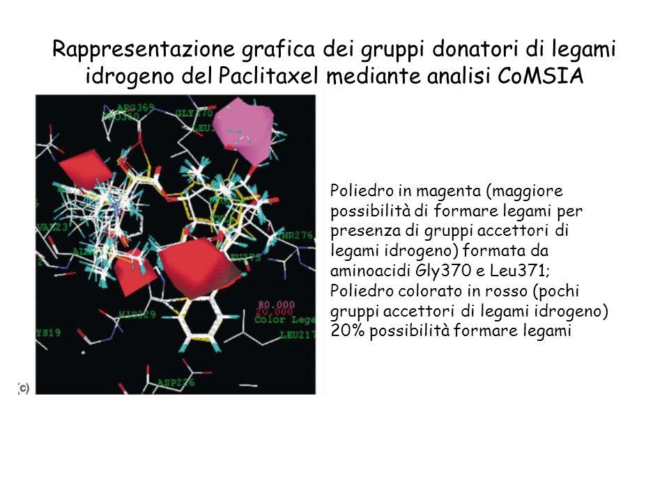 Rappresentazione grafica dei gruppi donatori di legami idrogeno del Paclitaxel mediante analisi CoMSIA